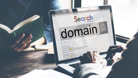 Preverjanje prostosti domene